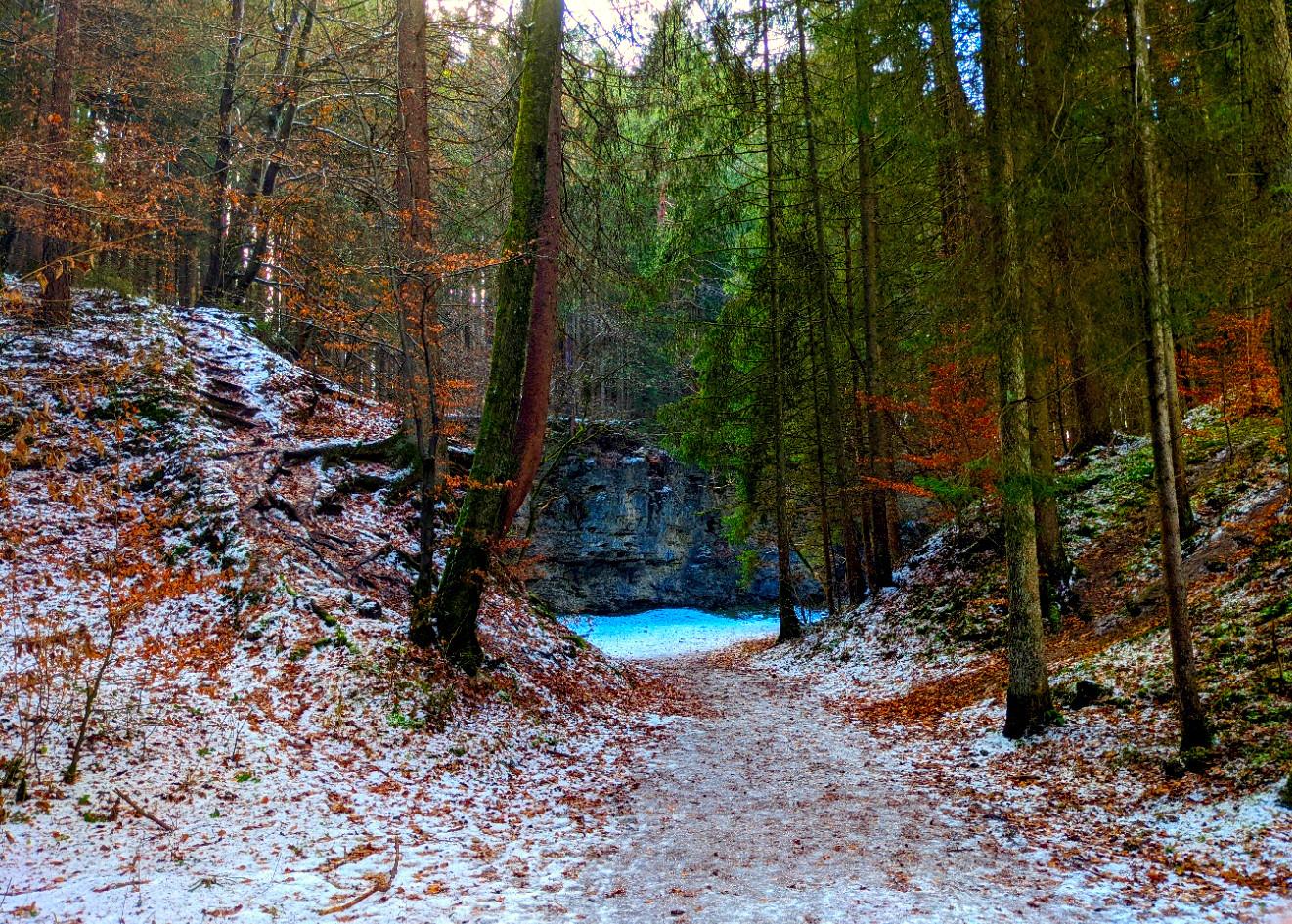 Eine Wand im Wald