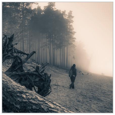 golf of finland fog3
