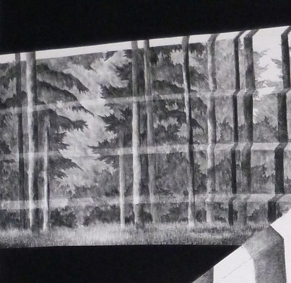 detail-Holon-#5--30x30-cm-drawing---50x5