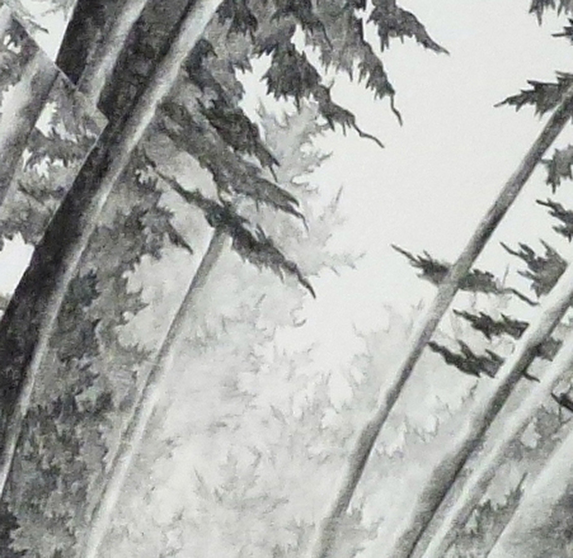 detail-Jubilee-#5--30x30-cm-drawing---50