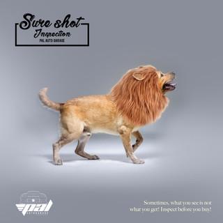 Surehot inspection dog-lion.jpg