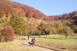 MTBOF2011_foto026kl.jpg