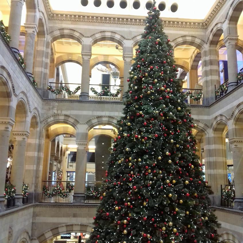 Magnum Plaza Christmas Tree