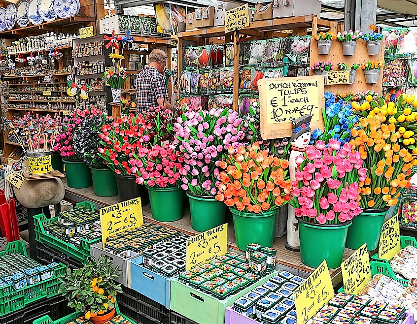 Bloemenmarkt Amsterdam - wonderworld of tulips