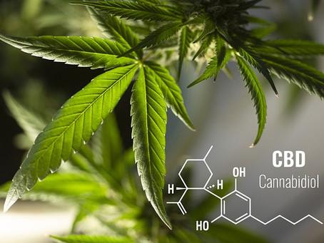 What Makes A Good Cannabis Dispensary?
