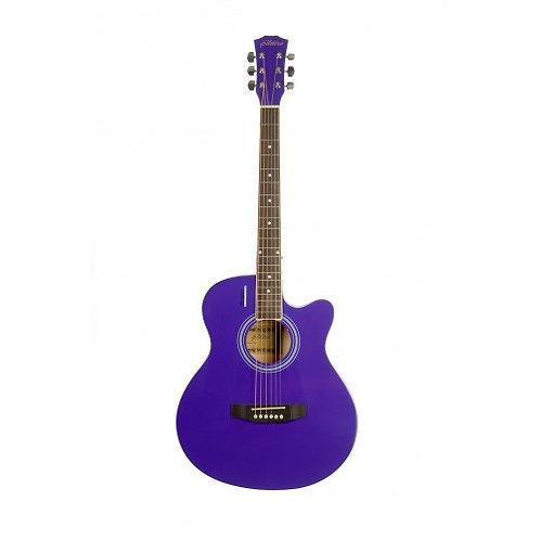 Акустическая гитара Elitaro E4010 VTS