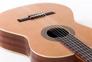 Классическая гитара Altamira 100+