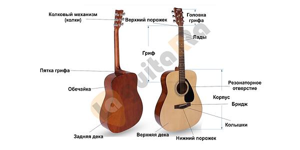 Акустическая гитара устройство.png