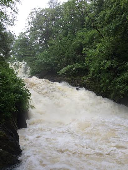 Really loud, spray everywhere - nature in full flow at Swallow Falls yesterday.