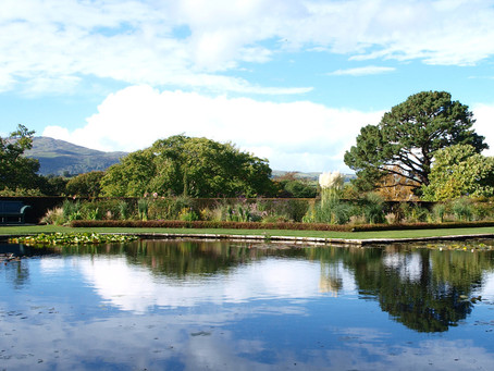 North Wales Festival of Gardens 2017