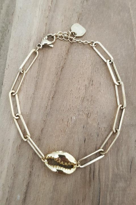 Bracelet Chainette Cauris
