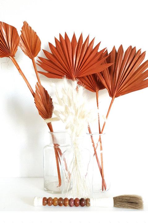 Mini Palm Spear Terracota