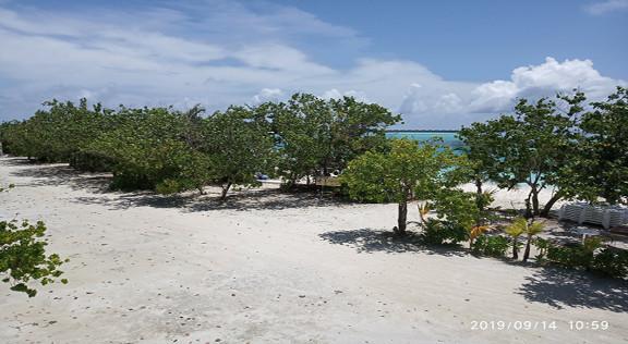 Bibee Maldives (54).jpg