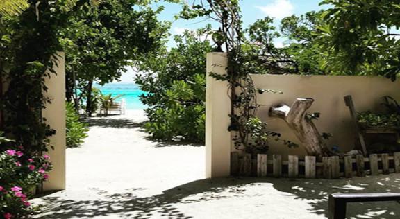 Bibee Maldives (34).jpg