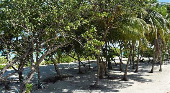 Beach House Dhiffushi, Dhiffushi, Maldives