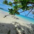 Bibee Maldives (3).jpg