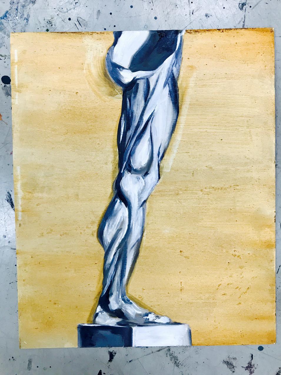 Study of the Leg