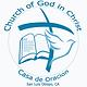New CDO Logo White Background.png