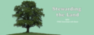 WEB BANNER-01.png
