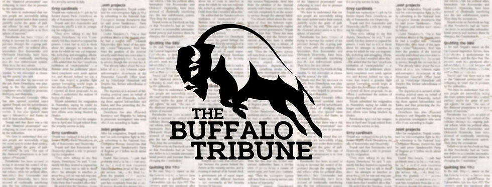 Tribune strip-min.jpg