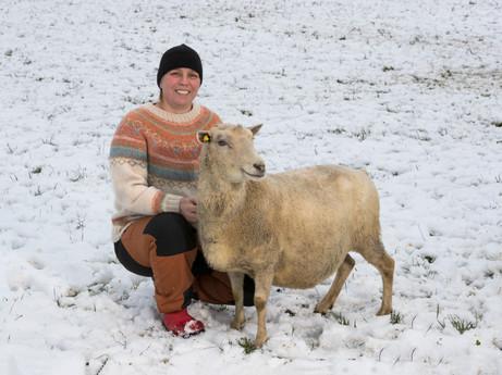 Satu ja lammas_8759.jpg