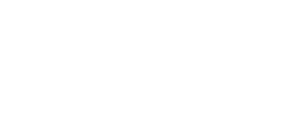 Think Sytemically Diagram_icon.png