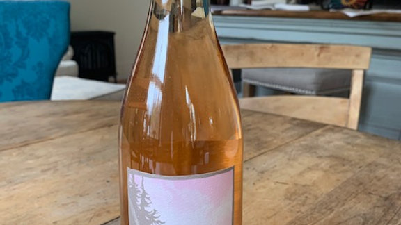 """Day Hock and Duece Rose - """"A gastronome's rose for sure"""" Oregon"""