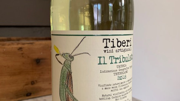 Tiberi Tribulato Frizzante - super dry, green apple, white flowers