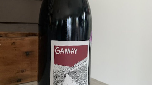 Valerie Forgues Touraine Gamay- Badass woman winemaker, delicious wine
