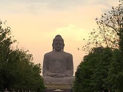 Dhammapada /Yamakvaggo 15-20