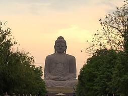 Dhammapada /Yamakvaggo 13-14