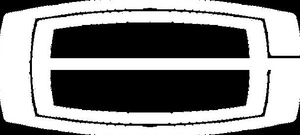 GB Logo WHITE 020821.png