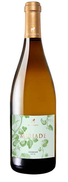 miriade viognier 2018, vallegarcia. bodega, vino, gourmet