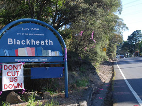 Upper Mountains cycleway push with Blackheath tunnel construction