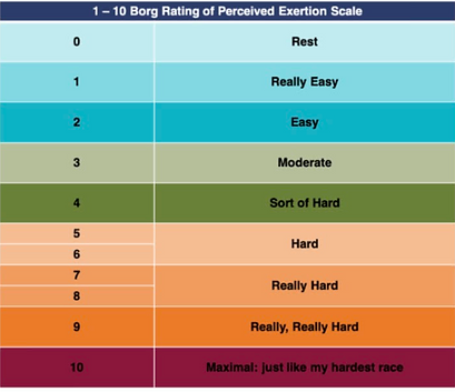 borg scale.png