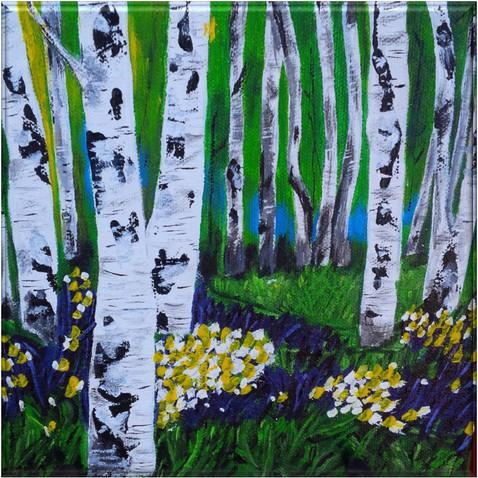 Birchtree Meadow