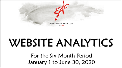Website Reporting January to June 2020 c