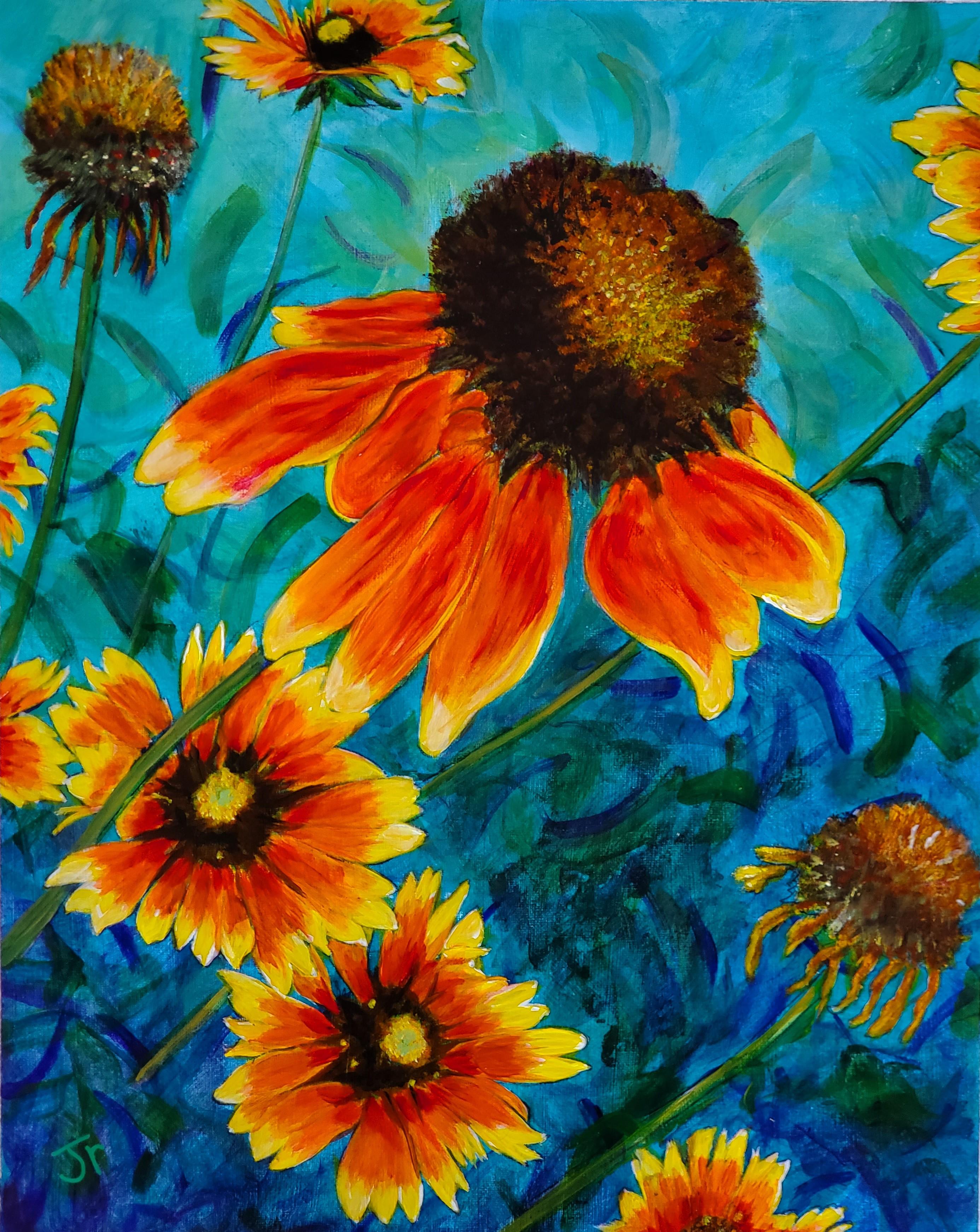 Blanket Flowers.jpg