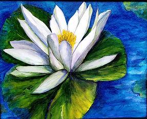 water lily artist seraya smit.jpg