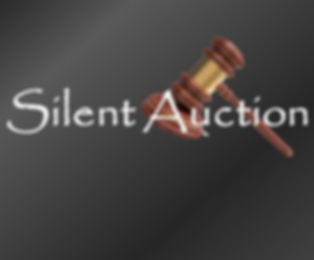 silent-auction6.jpg