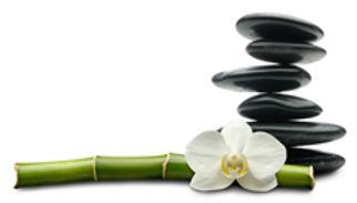 Lomi massage frimley,Lomi massage frimley green,Lomi massage farnborough,Lomi massage camberley,Lomi massage fleet,Lomi massage cove, Lomi massage woking,Lomi massage guildford,Lomii massage farnham,Lomi massage deep-cut