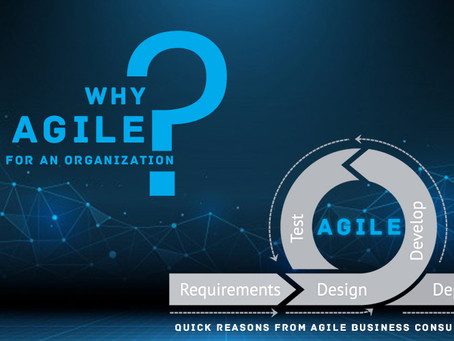 Why Agile for an Organization? Quick Reasons from Agile Business Consultancy