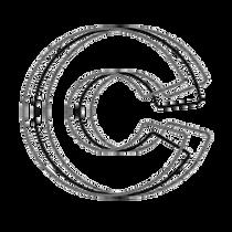 cni-logo_edited.png
