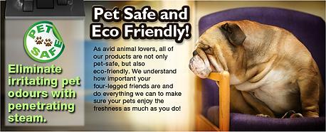 Fiber Care Pets Odor Removal Kuala Lumpur and Selangor