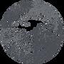 SHLogo-Texture.png