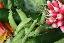 Vegetables CCO licenceStockSnap_8UKY9MPH