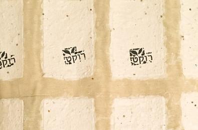 נייר זרעים רוקט.jpg