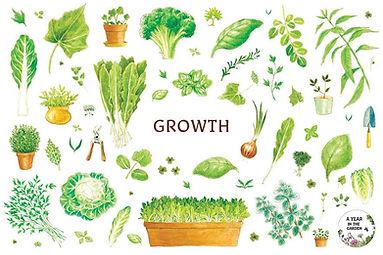 growth postcsrd