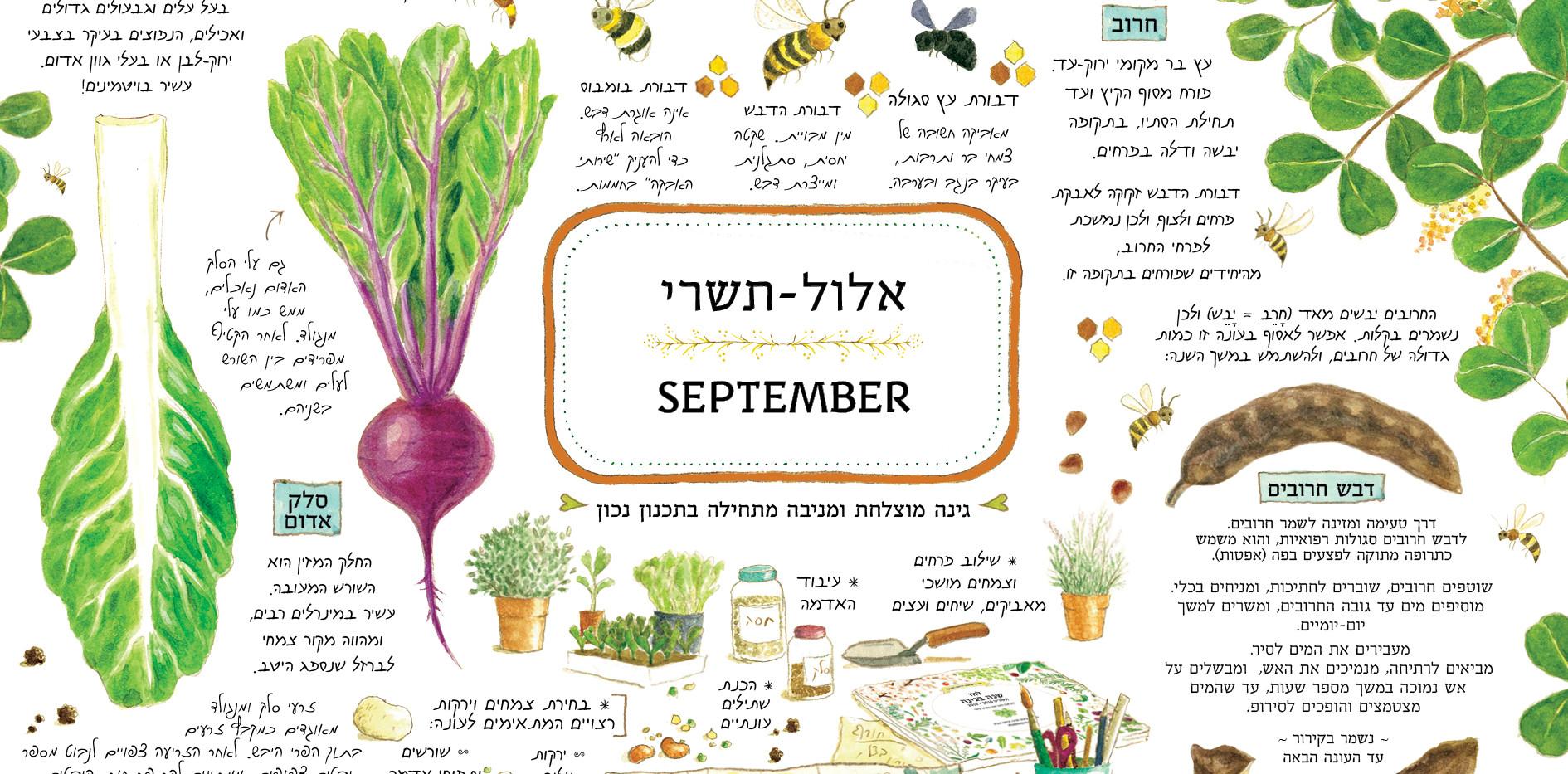 לוח-שנה-בגינה_תשעט_דףדוגמא012.jpg