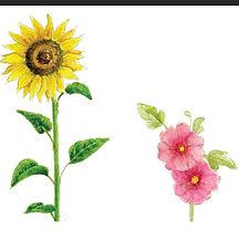 לושבג תשפ פרחים.jpg